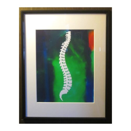Framed Chiropractic Spine Silhouette Abstract Print