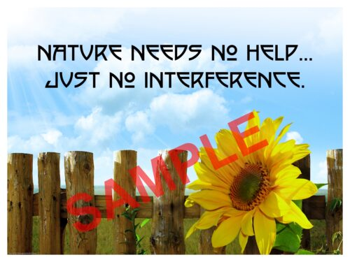 Chiropractic Poster nature needs no help