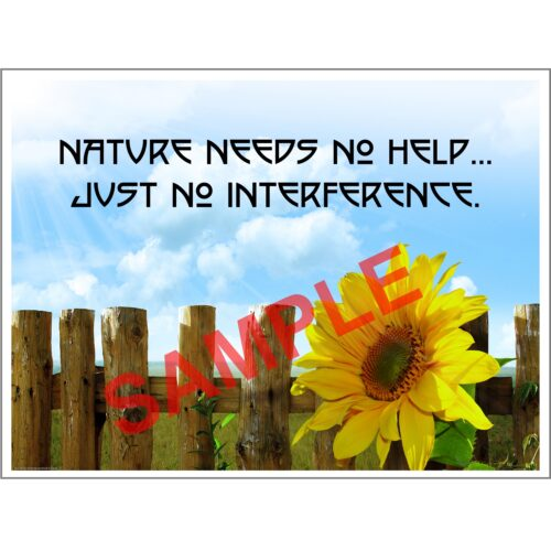 Affordable Chiropractic Poster Wall Art Nature No Help