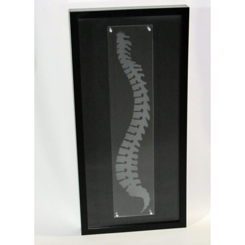 Chiropractic spine wall art