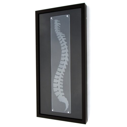 Chiropractic Wall Art
