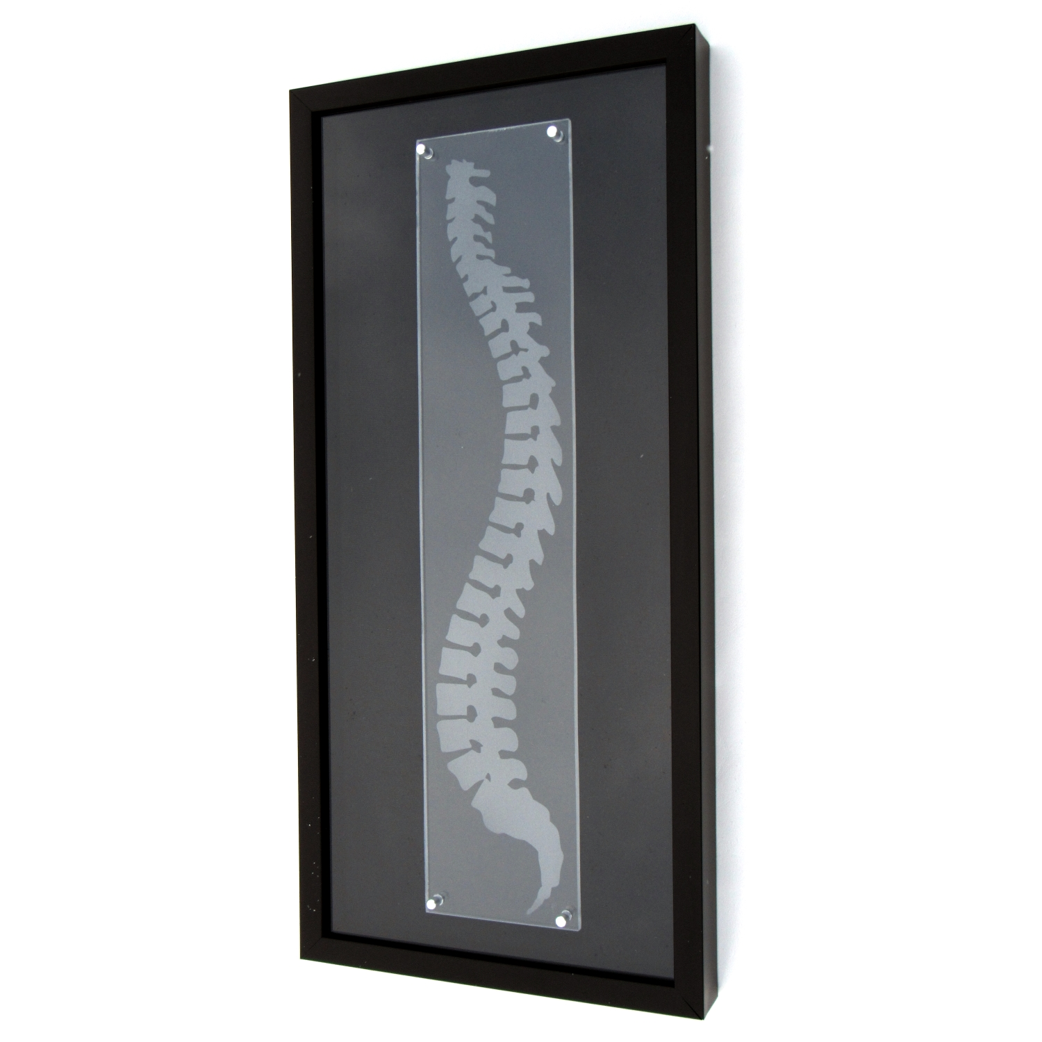 Chiropractic Art – Spine ShadowBox
