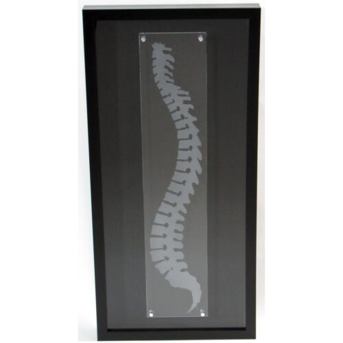 Spine memory box wall art