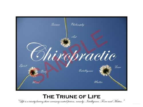 Chiropractic Poster Triune of Life