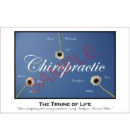 Affordable Chiropractic Poster Triune