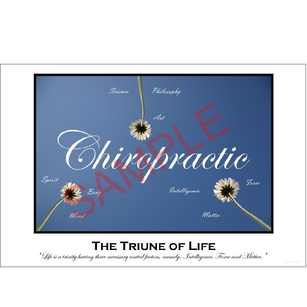 Chiropractic Poster: The Triune of Life